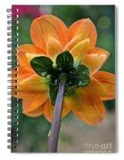 Dahlia 9001 Rearview Spiral Notebook