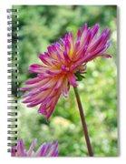 Dahlia Flower Art Print Green Summer Garden Spiral Notebook
