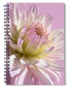 Dahlia Flower Pretty In Pink Spiral Notebook