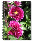 Dahlia Named Edinburgh Spiral Notebook