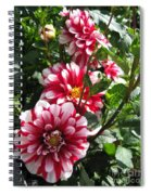 Dahlia Named Yoro Kobi Spiral Notebook