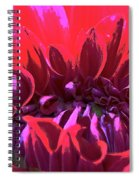 Dahlia Over Exposed Spiral Notebook