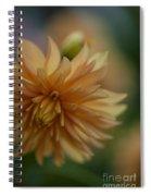 Dahlias Pastel Spiral Notebook