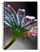 Daisy Abstract With Droplets Spiral Notebook