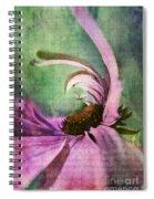 Daisy Fun - A01v042t05 Spiral Notebook