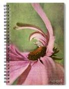 Daisy Fun - A01v04b2t05 Spiral Notebook