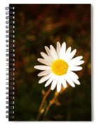 Daisy Is Single But Not Lonely  Spiral Notebook
