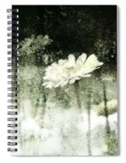 Daisy Love Spiral Notebook