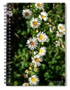 Daisy Production Line Spiral Notebook