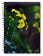 Daisy Profile Spiral Notebook