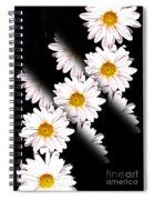 Daisy Split Spiral Notebook