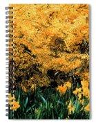 Dali Spring 1 Spiral Notebook