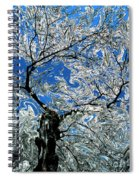Dali Spring 5 Spiral Notebook