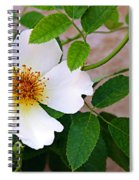Dancing Flora Spiral Notebook