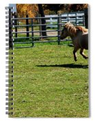 Dancing Pony Spiral Notebook