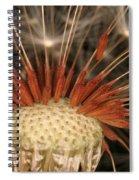 Dandelion Seeds Spiral Notebook