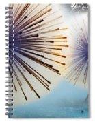 Dandylion Fountains Spiral Notebook