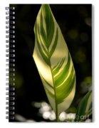 Dappled Ginger Leaf Spiral Notebook
