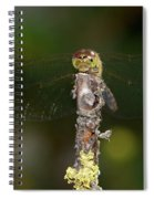 Darter 7 Spiral Notebook