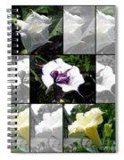 Datura - Ballerina Series Spiral Notebook