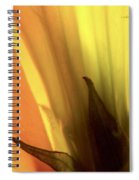 Datura Transparency  Spiral Notebook