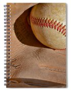 Dave Cash Mitt Spiral Notebook