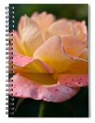 Day Breaker Floribunda Spiral Notebook