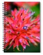 Day Glow Glory Spiral Notebook