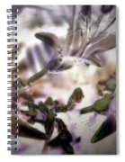 Day Lilies - Abstract Spiral Notebook