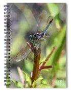 Daydreamer Spiral Notebook