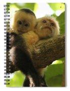 Daytime Siesta Spiral Notebook