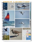 Daytona Beach Collection 2011 Spiral Notebook