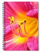 Dazzler Spiral Notebook