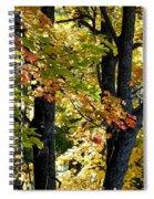 Dazzling Days Of Autumn Spiral Notebook