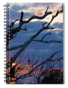 Dead Trees At Sunrise Spiral Notebook