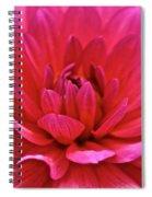 Decadent Dahlia Spiral Notebook