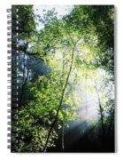 Deciduous Wood, Killarney National Spiral Notebook