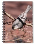 Decked Out - Tufted Titmouse Spiral Notebook