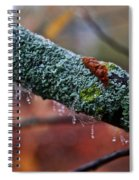 Decorated Branch Spiral Notebook