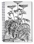 Decorative Flower Spiral Notebook