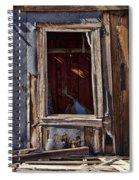 Decrepit Spiral Notebook