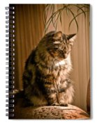 Deep In Kitty Thought Spiral Notebook