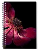 Deep Pink Anemone - 2 Spiral Notebook