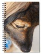 Deep Thought Spiral Notebook