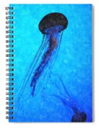 Deepsea Serenity Dswc Spiral Notebook