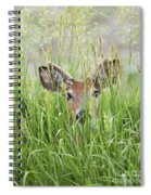 Deer In Hiding Spiral Notebook