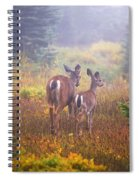 Deer In The Fog In Paradise Park In Mt Spiral Notebook