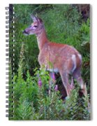 Deer In The Marsh Spiral Notebook