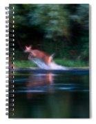 Deer Splash Spiral Notebook