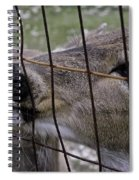 Deer Will Work For Crackers Spiral Notebook
